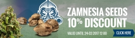 10% Discount Zamnesia Seeds